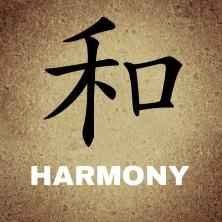 La vésicule biliaire : maîtresse de l'harmonie