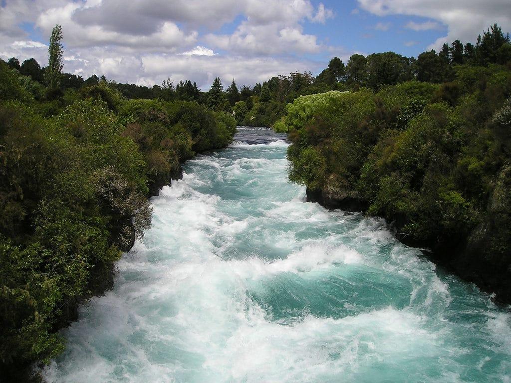 Les Reins règlent dans l'organisme tout ce qui a un rapport avec l'eau